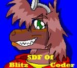 SDF Face Shot by BlizzardLynn